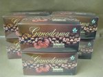 4-1 Cafe Style Healthy Coffee with Ganoderma, Creamer & Sugar 6 boxes (20 pks/bx) - Free Shipping USA!